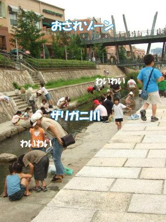 20070711110646.jpg