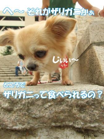 20070712094605.jpg
