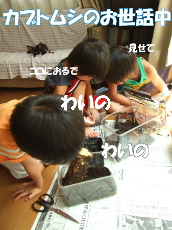 20070808020407.jpg