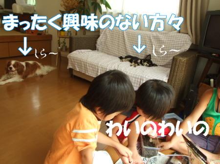 20070808020426.jpg