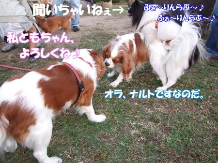 20071024080019.jpg