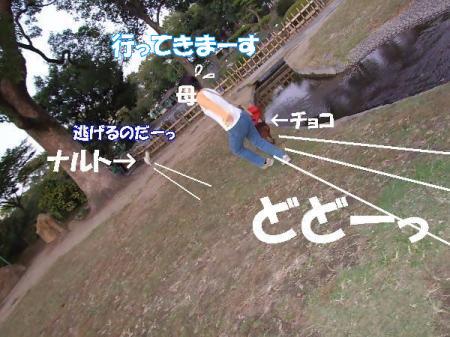 20071025194837.jpg