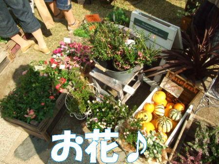 hanako07 (2)