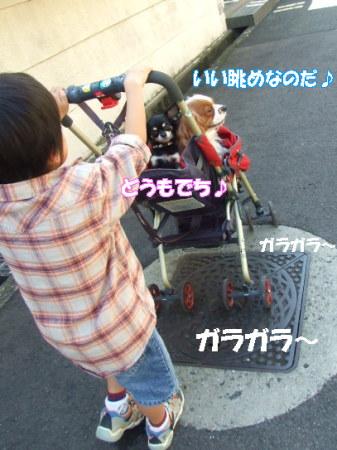 20071102135533.jpg