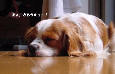 DSCnaruto.jpg