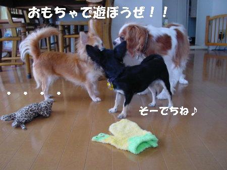 happy0000.jpg
