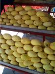 熟したマンゴ