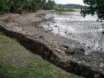 被害を受けた堤防