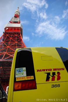 ハトバスと東京タワー
