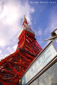 東京タワー行きのバスと東京タワー