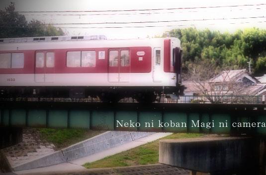 電車(奈良)