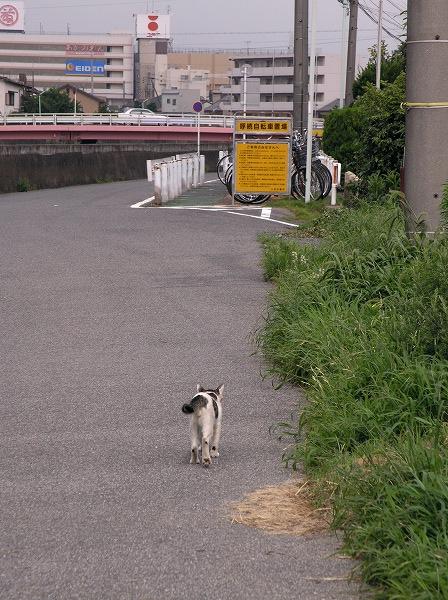 20070719_006