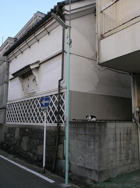 20071124_071