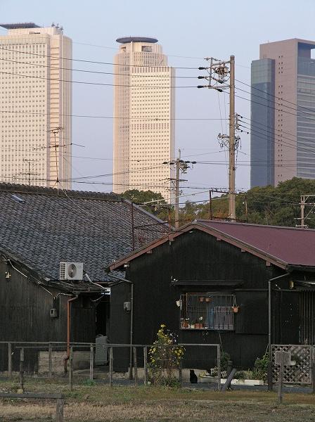 20071202_082