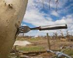 カンサス州を襲ったトルネードの爪痕写真集