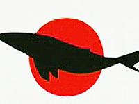 日本が行なっている「捕鯨」に対する批判CM