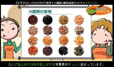 やずやの「発芽十六雑穀」無料試食セットキャンペーン