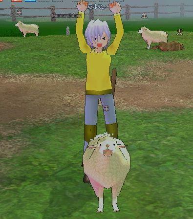 羊の毛げっと~ワーイヽ(゚∀゚)ノ