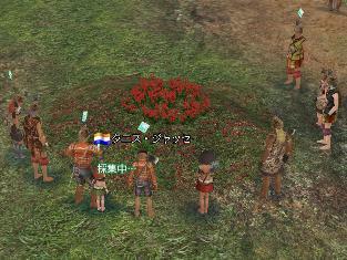 花を囲んでワッショイワッショイ