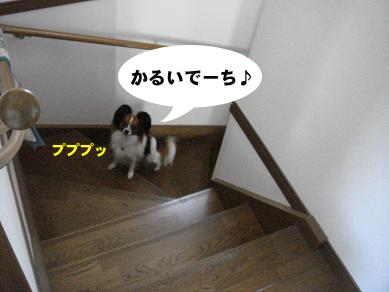 20070724152350.jpg