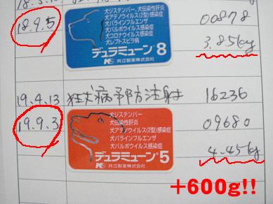 20070903213524.jpg