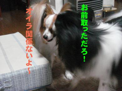 20071109010632.jpg