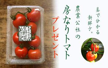 房なりトマトプレゼント