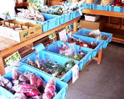 ふるさと市野菜