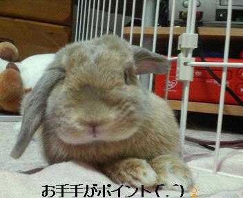 モコちゃん色っぽい☆
