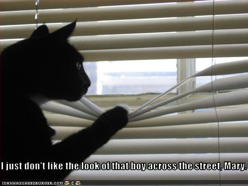 ピーピングcat