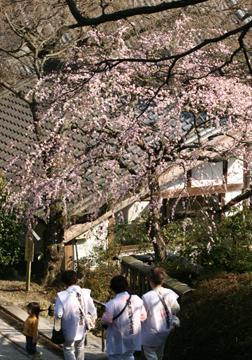 20070304yosimine-jyunrei.jpg