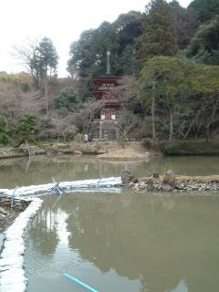 浄瑠璃寺三重塔(リサイズ) H24/3/25