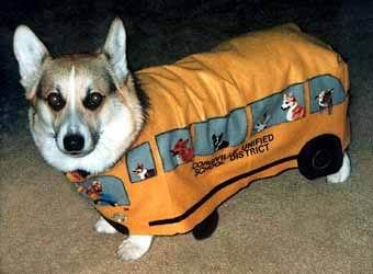 dog-costumes-010
