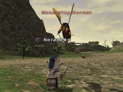 蜂狩り狩り