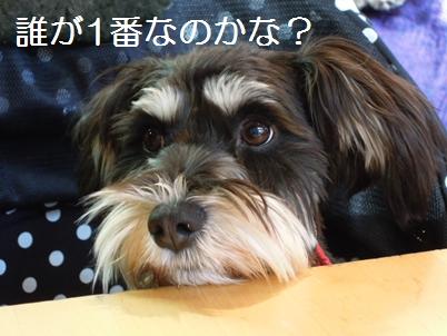 10_20120125011148.jpg