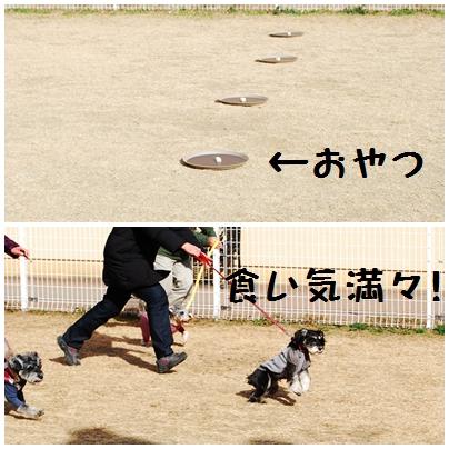 1_20120125232719.jpg