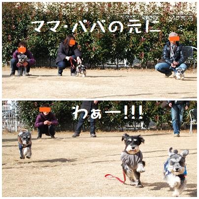 2_20120125232717.jpg