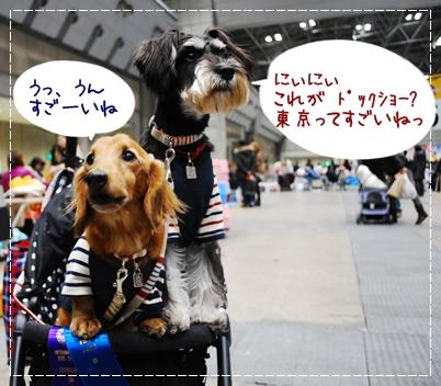 3_20120121120046.jpg