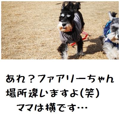 3_20120125232716.jpg