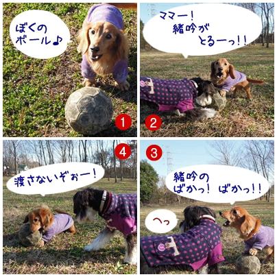 4_20111221232659.jpg