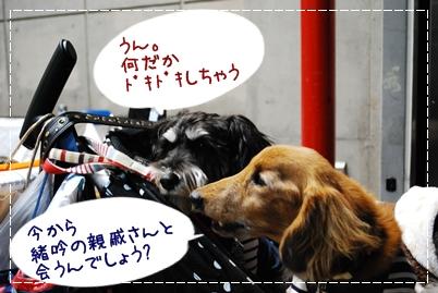 4_20120121120046.jpg