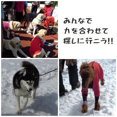 4_20120315000649.jpg