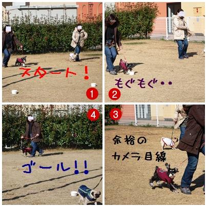 5_20111130221718.jpg