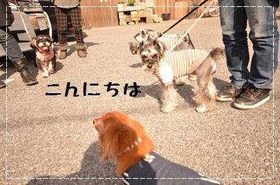 6_20120402232609.jpg