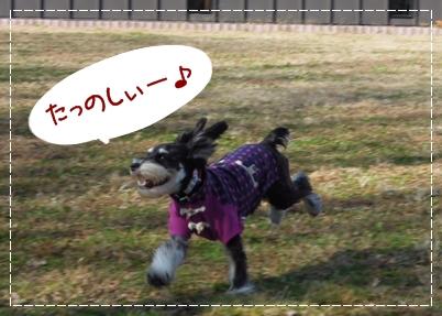 7_20111221232745.jpg