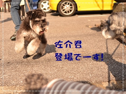 7_20120402232610.jpg