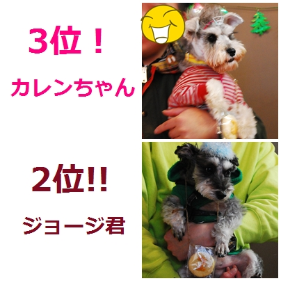 9_20120125011148.jpg
