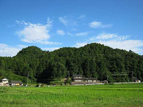 20110709tanoyama.jpg
