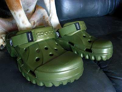 crocks.jpg