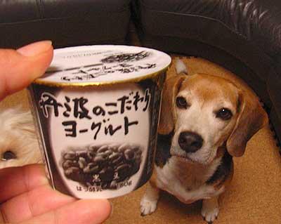kuromame-yoguruto.jpg